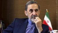 Velayeti: Japonya, İran için özel öneme sahiptir