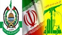 Hamas Sözcüsü: İran'ı diğer ülkelerden ayıran özellik, İran'ın Filistin davasına açık ve net bir şekilde destek vermesi