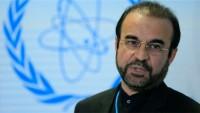 İran nükleer silahların imha edilmesine tam destek veriyor