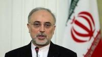 İAEK Başkanı Salihi: Bazı bölge ülkeleri İran'ın nükleer kazanımlarını kıskanıyor