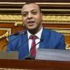Mısırlı parlamenter: Katar ve Türkiye'nin yıkıcı rolleri inkar edilemez