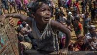 İran Dışişleri Bakanlığı Sözcüsü Kasımi: Myanmarlı müslüman durumu kaygı verici