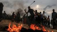 Ok ve yay, Filistinlilerin yeni mücadele yöntemi