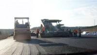 Kesilen ağaçların yerine asfalt döküldü