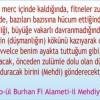 Ahir Zaman ve İmam Mehdi'nin Zuhuru
