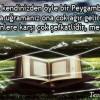 Şefkat Peygamberi
