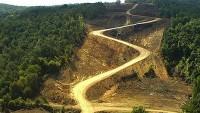 Orman ve Su İşleri Bakanı: Kesilecek Ağaç Sayısını Bizde Bilmiyoruz!..