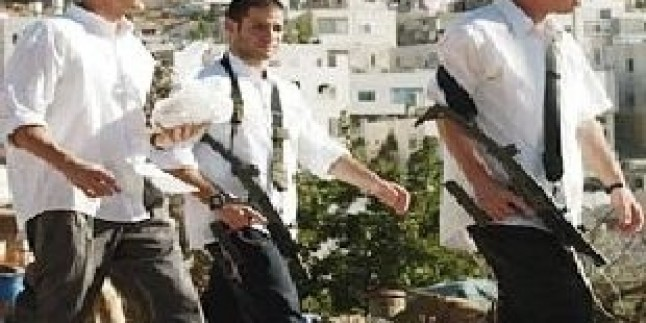 Yahudi Yerleşimciler Bu Kez Filistinlilerin Zeytin Ağaçlarına Saldırdılar…
