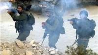 İşgal Güçleri Gazze Sınırında 3 Çiftçiyi Yaraladı