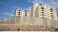 Yahudi yerleşimciler 300 zeytin fidanını söktü…