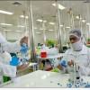 İran'da, Prostat Kanseri ilacı üretimine başlandı