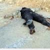 Dera – Kunaytra – Şam Kırsalları Üçgeninde Stratejik Bölgeler Suriye Ordusunun Hakimiyetine Geçti…
