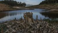 Brezilya kuraklık tehdidiyle karşı karşıya…