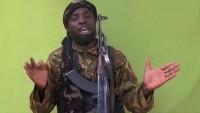 Çad'dan Boko Haram liderine: Yerini biliyoruz teslim ol