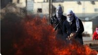 Filistinli Aktivistler Ma'ale Adumim – Kudüs Karayolunu Trafiğe Kapattı.