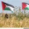 Filistin Halkı, Toprak Günü'nü Çeşitli Etkinliklerle Anmaya Hazırlanıyor