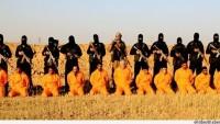 Tekfirci IŞİD terör örgütü bugün Iraklı gönüllü halk birliği üyesi 11 direnişçiyi idam etti.