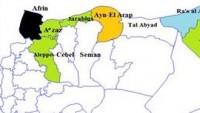 Suriyeli Kürt Direnişçiler, Ayn el-Arap Bölgesinde 2 Köy ve 2 Tepeyi Teröristlerden Temizledi