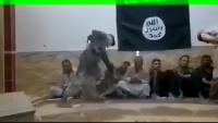 Video: Irak'ta IŞİD Teröristlerinin Esir Aldığı Sivillere Uyguladığı İşkence Görüntüleri