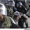 Korsan İsrail Askerleri, Yürüyüş Yapan Filistinlilere Saldırdı
