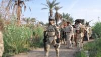 Irak Güçleri, Beyci Çevresinde Çok Büyük Bir Bölgeyi IŞİD'den Geri Aldı