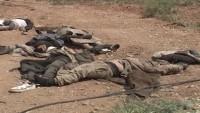Suriye Ordusu, Yurt Genelinde Çok Sayıda Teröristi Öldürdü