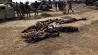 Irak ordusu Felluce kırsalında teröristlere pusu kurdu. 18 ölü