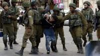 İşgal Güçleri Bir Genci Gözaltına Aldı ve Bir İhtiyarı Darp Etti