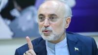 Ali Ekber Salihi: İran en kısa zamanda nükleer faaliyetlerini daha da kalkındırmaya hazır