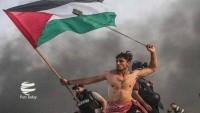 Filistinli direnişçi  gencin fotoğrafı, yılın fotoğrafı seçildi