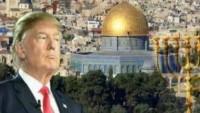 ABD Üniversiteleri Yahudi hocaları Trump'a dava açtı