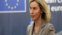 AB: Afrin Harekatı Türkiye'nin güvenliğini sağlayamaz