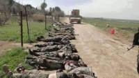 Esedi: Felluce Operasyonu'nda 665 IŞİD teröristi öldürüldü