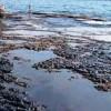 İranlı Araştırmacılar Petrol Kirliliğini Parçalayan Bakteri Tozunu Elde Etti