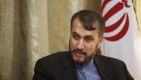 Abdullahiyan: Arabistan'ın tutumu terörizmin artmasına sebep olmuştur