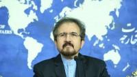 Kasımi: Bölge ülkeleri arasındaki sorunlar Riyad toplantısının sonucudur
