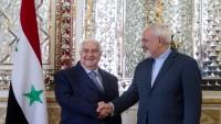 İran dışişleri bakanı Zarif, Palmira'nın kurtarılması munasebetiyle Suriye'yi kutladı