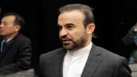 İran'ın UAEK temsilcisinden açıklamalar
