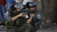 Siyonist yerleşimciler intifada korkusundan silahlanmaya başladı