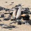Yemen Hizbullahı, Suudi ittifak'ın bir casusluk İHA'sını düşürdü