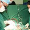 İran 44 ülkeye tıbbi malzeme satıyor