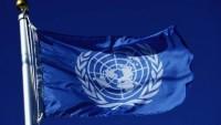 BM'nin Bercam'la ilgili raporu üzerine