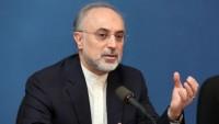 Salihi: Tekfiri terörizme karşı mücadelede direniş zafer kazanacak