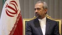 Amerika'da yaşayan İranlılar tarafından kök bilim şirketlerinin kurulmasına kolaylık