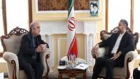 Emir Abdullahiyan: Terörizmle mücadele Suriye ile sınırlı kalmamalı