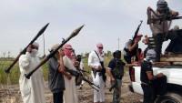 Teröristler batı yapımı silahlardan yararlanıyorlar