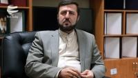 Garibabadi: Avrupalı vatandaşlar İran için önemlidir