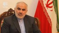 İran'ın Lübnan büyükelçisi: İran karşıtı düşmanlıklar, İran'ın Filistin ve Direniş'e desteği içindir