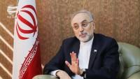 Ali Ekber Salihi: Nükleer anlaşmanın yenilgiye uğraması halinde karşı taraf daha fazla zarar görür