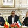 Laricani: İran ve Afrika ülkeleri ilişkileri geliştirilmeli